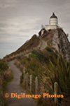 Nugget Point 0641