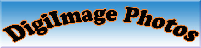 Digiimage Photos Banner